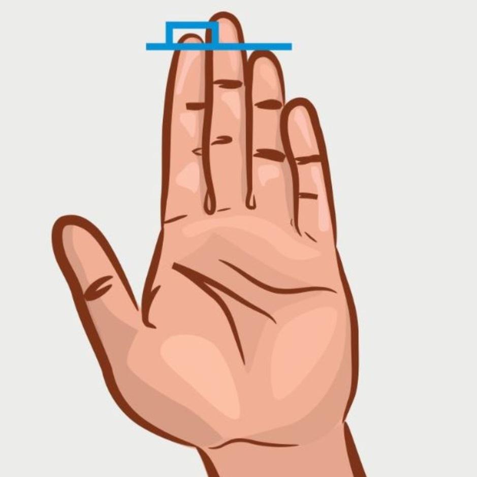 The index finger is longer than the ring finger